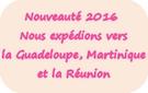 picto expéditions Toutenboisetcie vers la Guadeloupe, Martinique et la Réunion